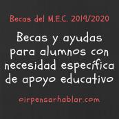 Becas del MEC 2019-20 para alumnos con necesidad específica de apoyo educativo