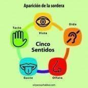 Momento de la aparición de la sordera: Diferencias respecto al desarrollo lingüístico